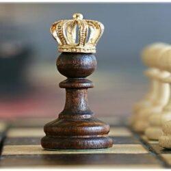 Podsumowanie roku szachowego SP 24